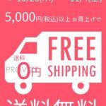 5000円以上で送料無料キャンペーン!【10月26日~11月4日の10日間限定】インターネットを使ってPROVICEでお買い物してみませんか?