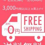 3000円以上で送料無料キャンペーン!【2月25日~3月6日の10日間限定】インターネットを使ってPROVICEでお買い物してみませんか?