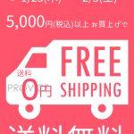 5000円以上で送料無料キャンペーン!【1月25日~2月3日の10日間限定】インターネットを使ってPROVICEでお買い物してみませんか?