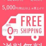 5000円以上で送料無料キャンペーン!【12月25日~1月3日の10日間限定】インターネットを使ってPROVICEでお買い物してみませんか?